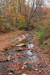 Marsh Creek looking upstream from Jenks Road.JPG