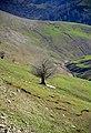 Masuleh - Khalkhal Road - panoramio.jpg