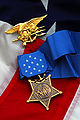 Michael A. Monsoor - Medal of Honor 080314-N-3404S-115.jpg