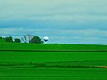 Middleton 750,000 gallons Water Tower - panoramio.jpg