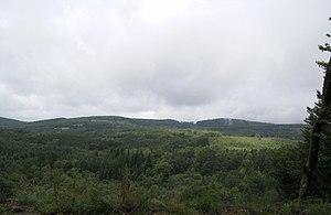 Plateau de Millevaches - Image: Millevache Plateau near Servieres