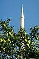 Minarett und Mandarinen (Alanya 2013-10) - panoramio.jpg