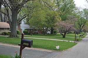 Minerva Park, Ohio - Houses on Minerva Lake Road