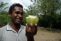 Ministry of Agriculture Cocoa research officer Raymond Vava holds half a cocoa pod. (10703232776).jpg