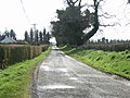 Minor Road in Haystown and Carnuff Little, Co. Meath - geograph.org.uk - 745398.jpg