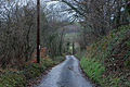 Minor road near Wileirog-fach - geograph.org.uk - 1603161.jpg