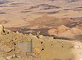 Mitzpe Ramon Ibex blocking trail at Mitzpe Ramon (15266995029).jpg