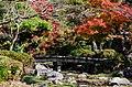 Momiji in Maruyama Park - panoramio.jpg