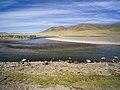 Mongolia (35352880322).jpg