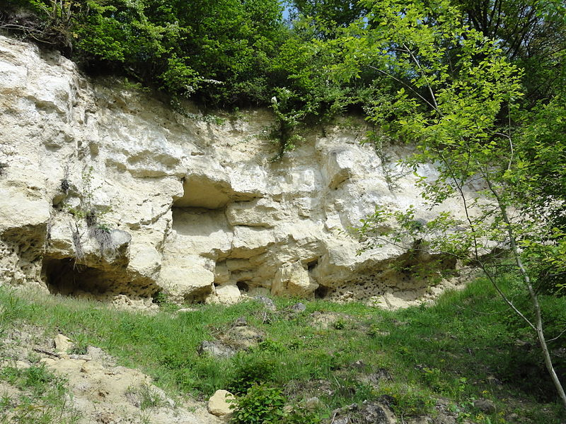 Montchâlons (Aisne) colline, détail roches