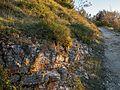 Montes de Vitoria - Camino al Pagogan - Roca caliza 01.jpg
