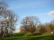 Montreuil parc des Beaumonts 1.jpg