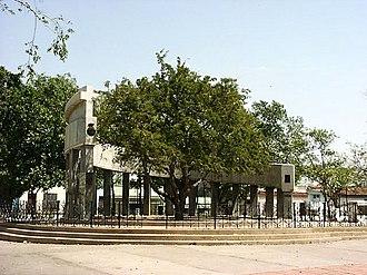 Santa Clara, Cuba - Tamarind, Santa Clara's tree and foundation of city monument.