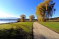Moosburg Tigring Strussnighof Forst- und Teichwirtschaft 06112010 032.jpg