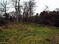 Moreland's Meadow, Belfast - geograph.org.uk - 1107262.jpg