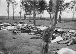 Arméniens abattus vers 1918 pendant le génocide arménien qui a fait plus d un million de victimes.