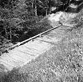 Most iz brun na poti v Brezen 1963.jpg