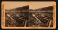 "Mouth of the ""Troandik"" (plenty fish) River, from which the Klondike mining region takes its name, Alaska, from Robert N. Dennis collection of stereoscopic views.png"