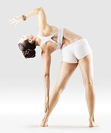 220px Mr yoga toppling tree yoga asanas Liste des exercices et position à pratiquer