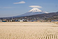 Mt.Fuji from Fuji City 01.jpg