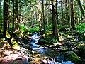 Mt. Baker-Snoqualmie National Forest (9292815478).jpg
