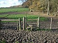 Muddy stile area - geograph.org.uk - 1055830.jpg