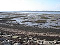 Mudflats on the west side of Thorney Island - geograph.org.uk - 1715442.jpg
