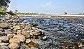 Murti River, West Bengal, India.jpg