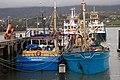 Mussel boats, Warrenpoint - geograph.org.uk - 293631.jpg