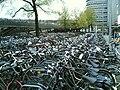 N2 Amsterdam bikes.jpg