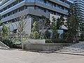 Nakamaruko tower blocks , Musashi-Kosugi , Kawasaki - panoramio (4).jpg