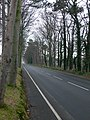 Nant Hall Road, Prestatyn - geograph.org.uk - 656718.jpg