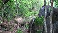 Narndra hill 2.jpg