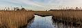 Nationaal Park Weerribben-Wieden. Slootjes in rietvelden ontstaan tijdens het turfsteken in vroegere jaren. 02.jpg