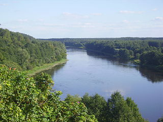 The river Nemunas at Liskiava village