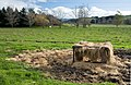 New Zealand - Rural landscape - 9714.jpg