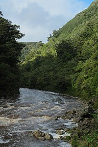 Ngakawau River from Charming Creek Walkway.jpg