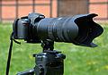 Nikon D3100 & AF-S Nikkor 70-200mm 1-2,8G ED VR II 01.jpg