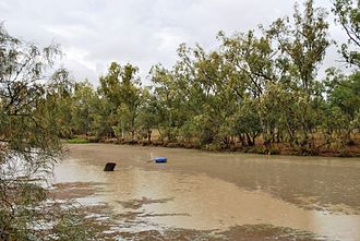 Moonie River - Moonie River at Nindigully