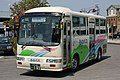 NishiTokyoBus C220 Runobus.JPG