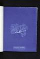 Nitophyllum punctatum (NYPL b11861683-419609).tiff