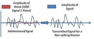 Neuronal noise Random electric fluctuations in neurons
