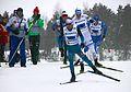 Nordic World Ski Championships 2017-02-26 (33309126245).jpg