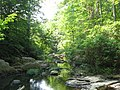 North Fork Quantico Creek - panoramio.jpg