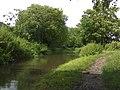 North along the MandB - geograph.org.uk - 484840.jpg