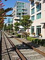 Northbound Waterfront Streetcar tracks near Lenora Street.jpg