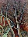 Nussbaume in Positano Ree.jpg
