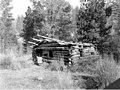 Old miner's cabin near Swauk Creek placer mines northeast of Cle Elum, October 1925 (LL 1107).jpg