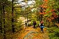 On the trail (1539817880).jpg