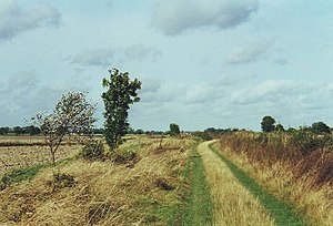 English: Open landscape on track from Swaffham...